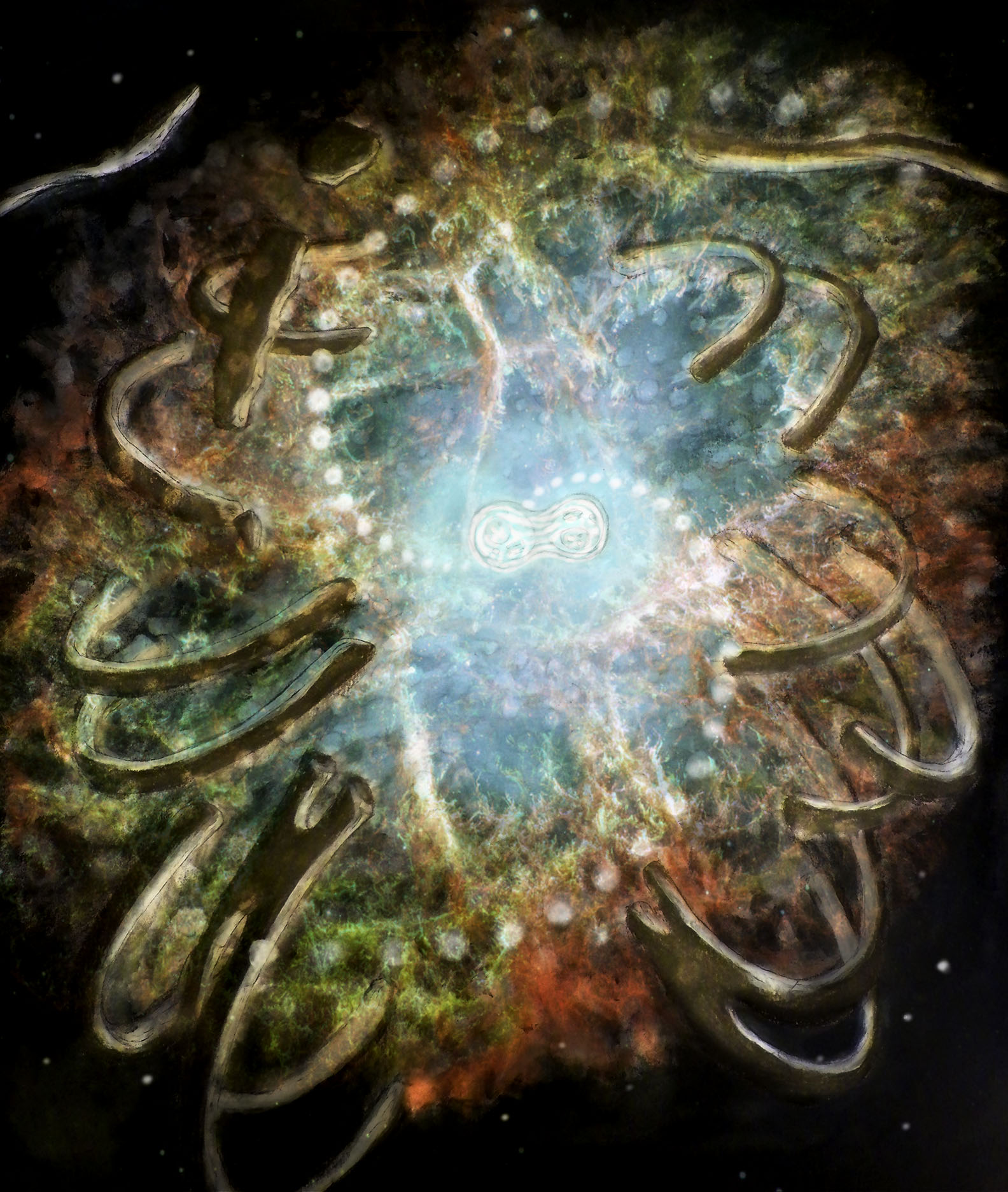 Supernova: The Substance of Life