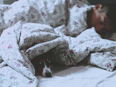 Pandemia aumentou o número de pessoas com distúrbios do sono