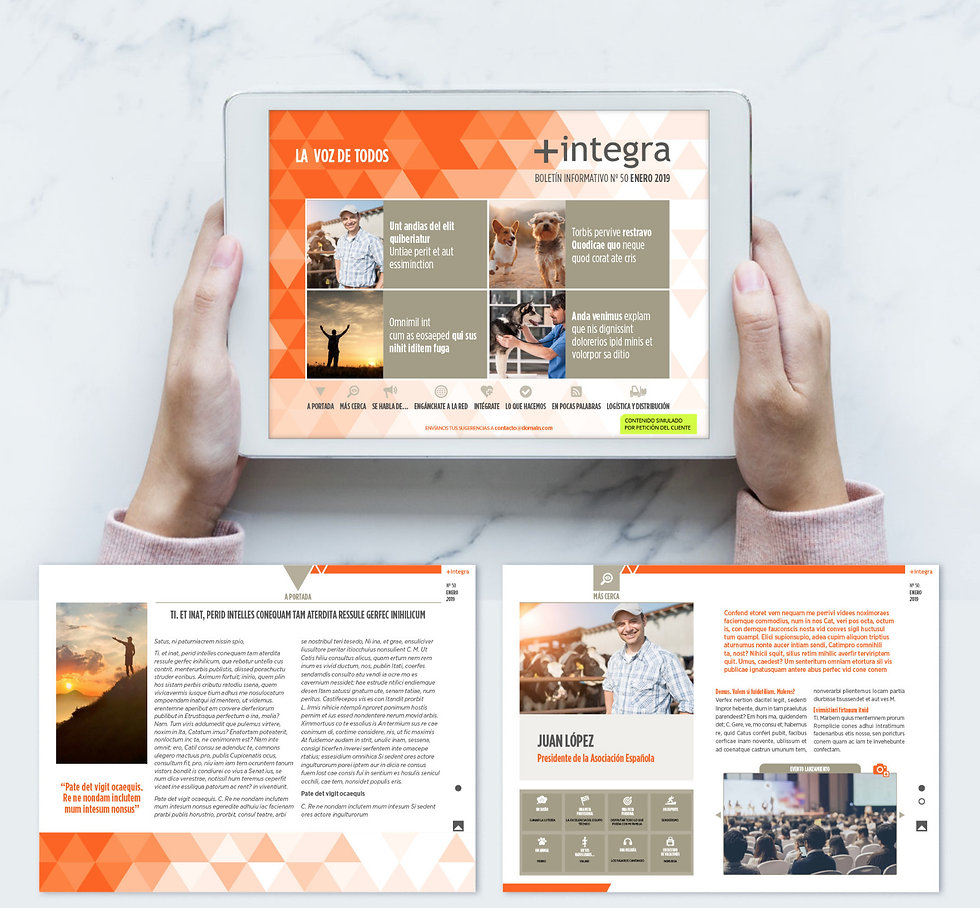 boetin informativo online digital diseño grafico