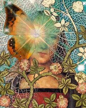 Astropoetic Butterfly