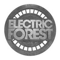 elecforfest.jpg