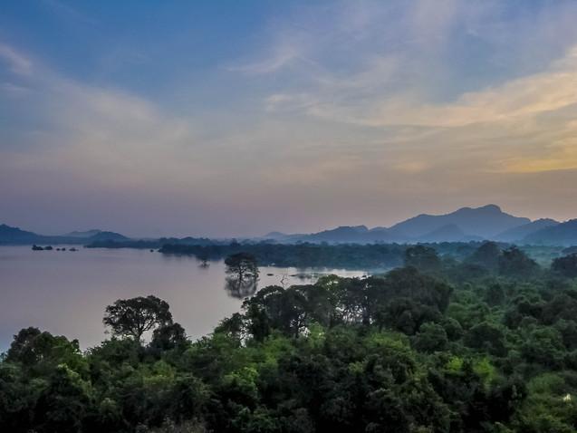 Paysage Sri Lanka