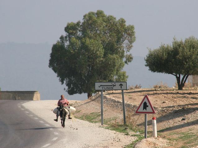 Retour de Tunis
