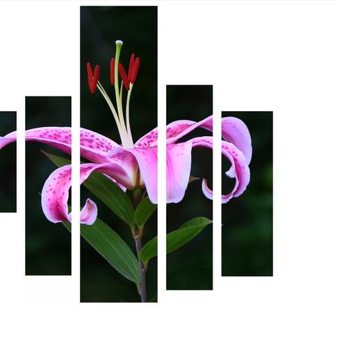 Bouquet recomposé