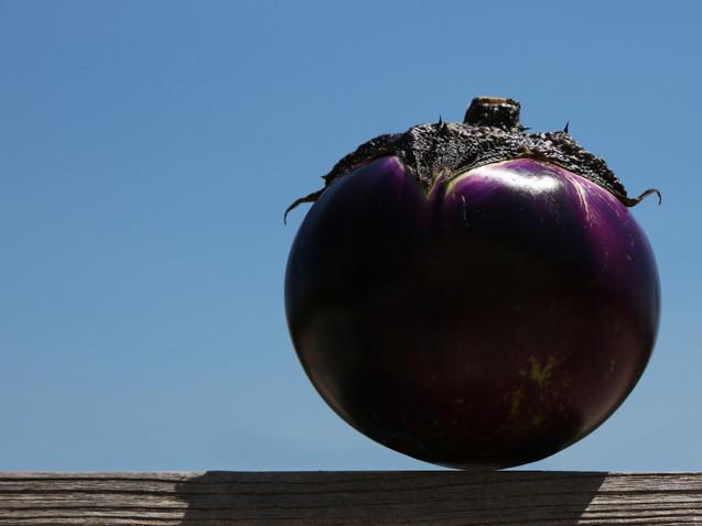 Suspension d'aubergine