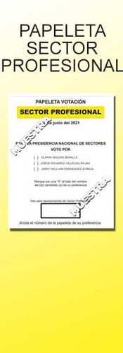 Sector Profesional