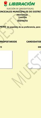 Concejales Municipales de Distrito