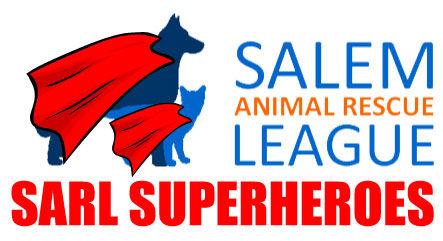 SARL-Superhero.jpg
