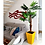Thumbnail: Vaso de Polietileno 60x38 - Ref. VQF60