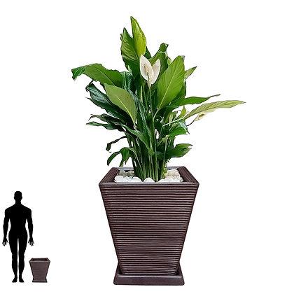 Vaso de Polietileno 45x35 - Ref. VQF45