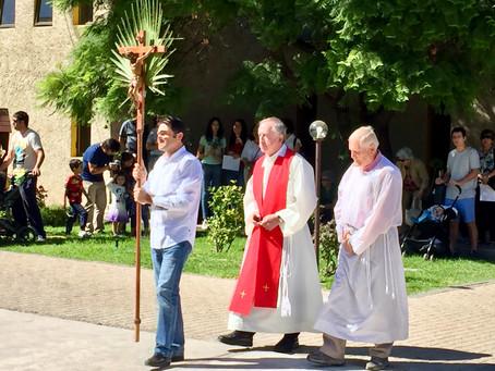 Celebración de Domingo de Ramos