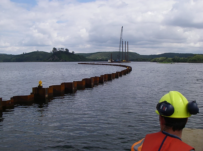 Sheet piles for marine construction