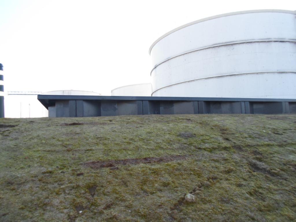 Liquid Bulk Terminal, Netherlands