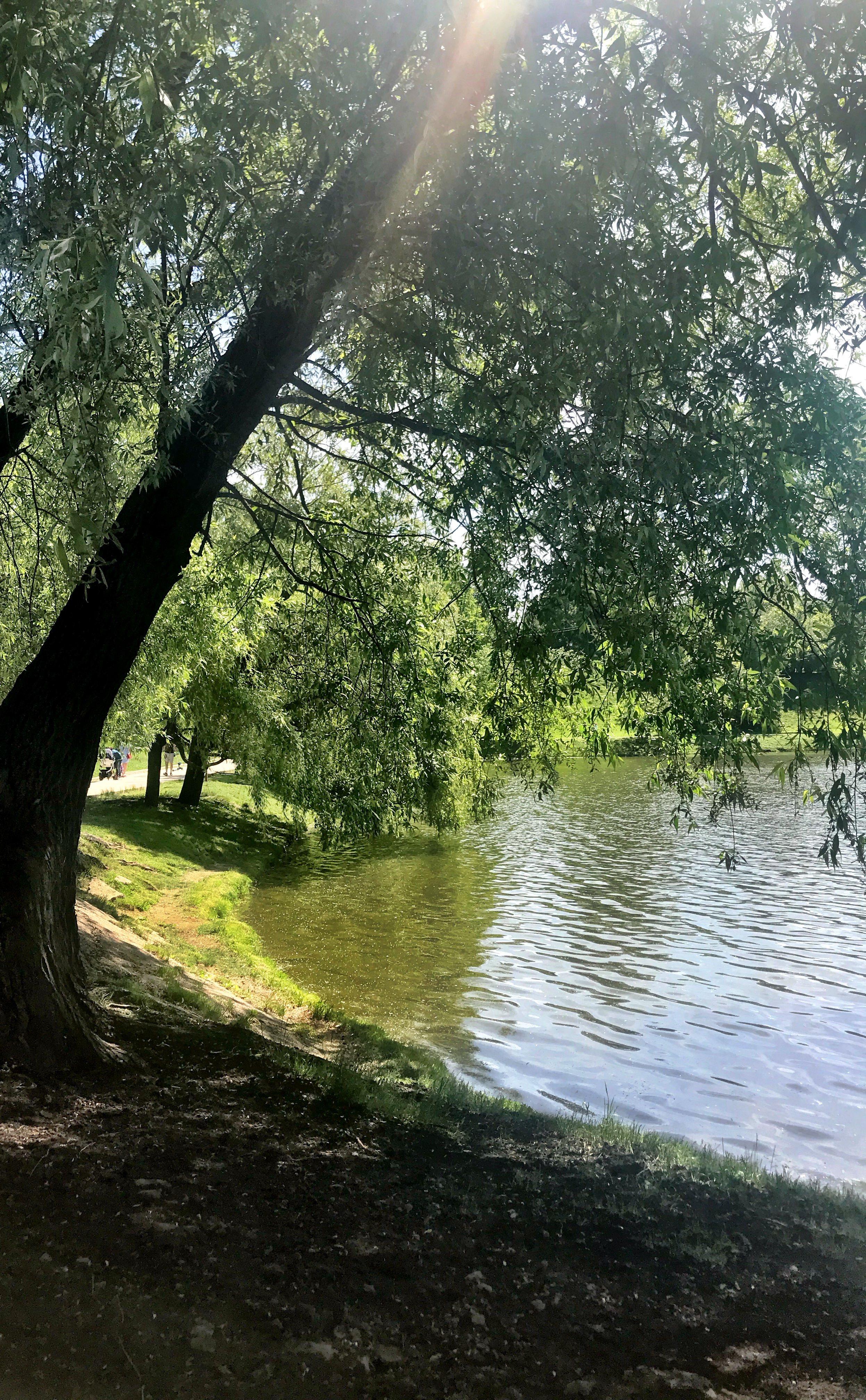 Park near Monastery