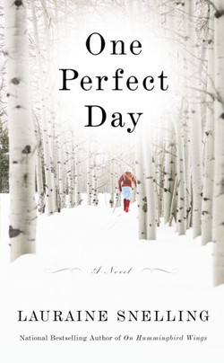 one perfect day 9780446544580