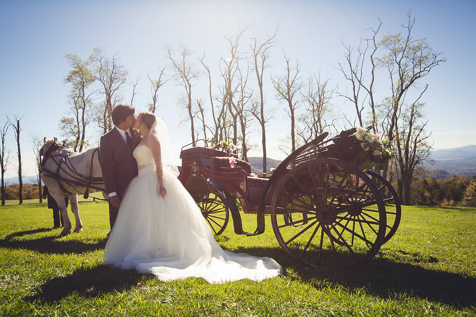 Bride and Groom Kissing Romantic Wedding with Horse and Carriage in NC
