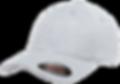 כובעים פלקספיט