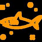 shark(1).png