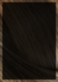 THE HAIR (1).png