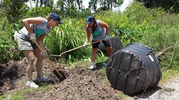 Hands On Orlando - Tree Planting Team