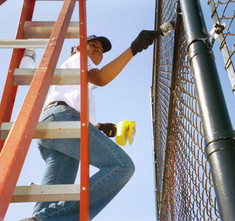 Hands On Orlando - Baseball Field Fence