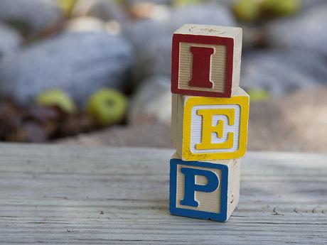 Individual Education Plan (IEP).jpg