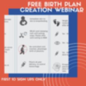 SALE_freebirthplancreation-3.png