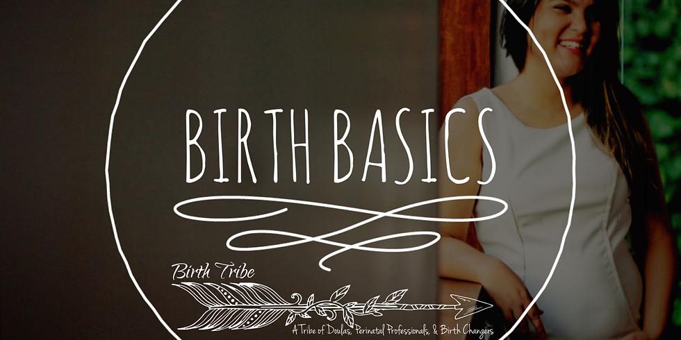 Birth Basics