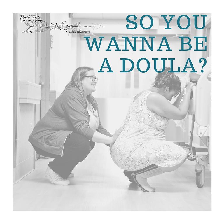 So You Wanna Be A Doula