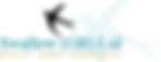 Swallow GB Ltd 250px.png