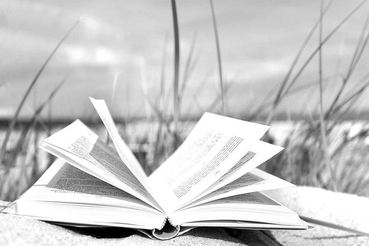 Submissions Peage Header - Open Book