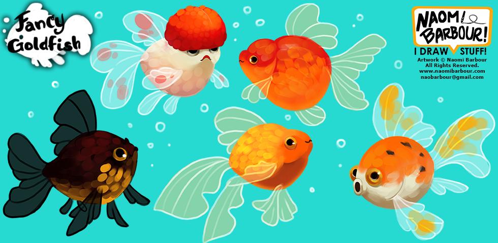 Fancy Goldfish Illustrations