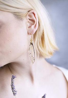 Boucles d'oreilles Méandres Cigales
