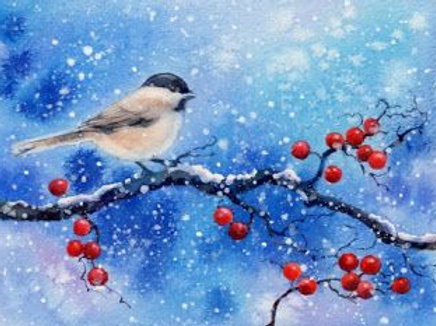 Winter Bird Painting At-Home Art Class! Family Package