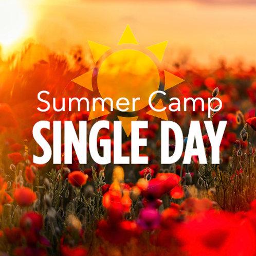 Summer Camp Single Day ($55)