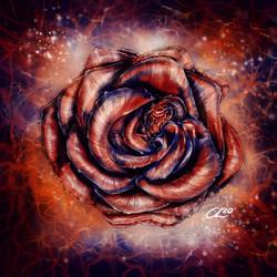 Electric, Awakened Rose Consciousness
