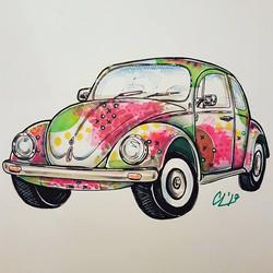 Watermelon Beetle