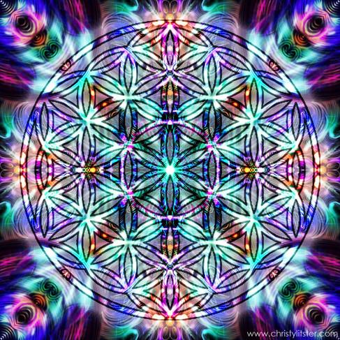 Flower of Life Stargate