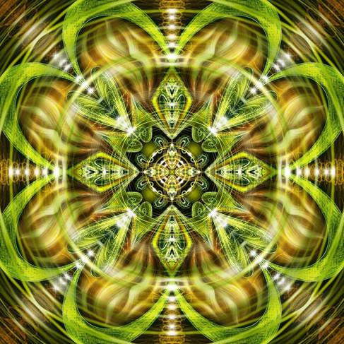 Pulse Stargate