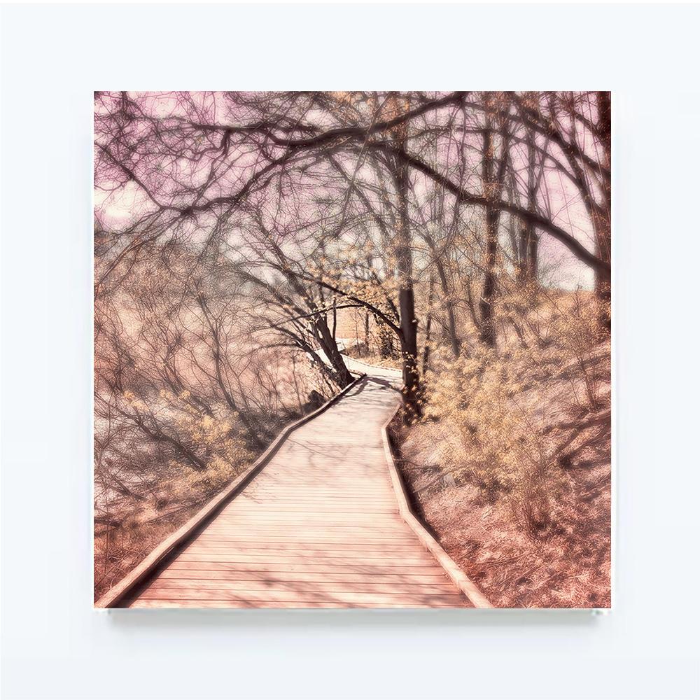 SOFTREALITY-The Track,100 X 100 cm