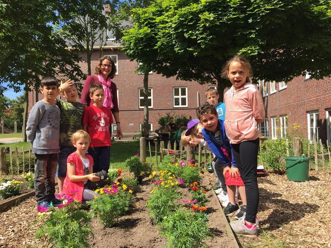 Ein Blick in den Schulgarten