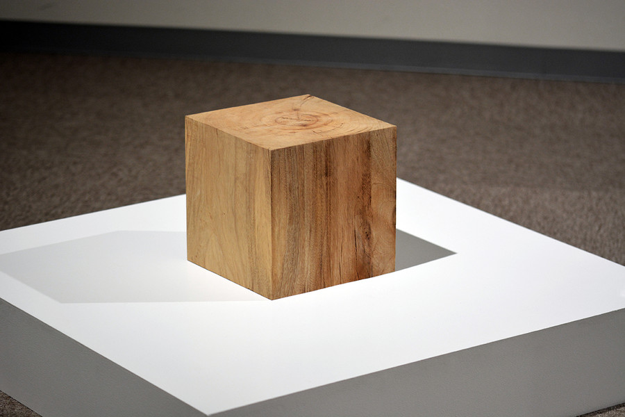 樹皮を剥いだクスの原木 ¼ Scale