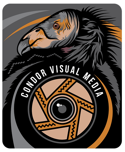 website_condor logo-01.png