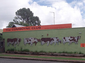 visit-the-comboyne-club.jpg