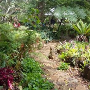 Garden Walk a success!
