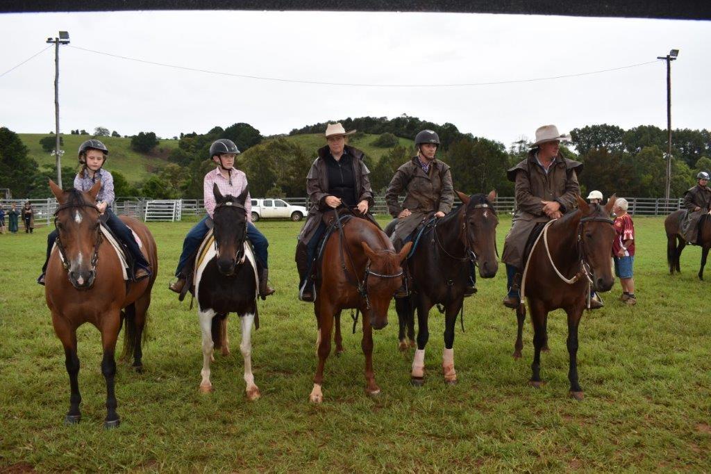 Horses Comboyne.jpg