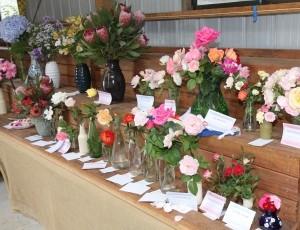 Flower Exhibition.jpg