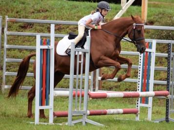 Equestrian Challenge.JPG