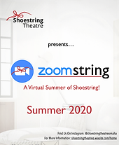 Zoomstring Poster- Website.png
