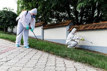 Exterminators outdoors in work wear spra